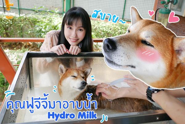 พาคุณฟูจีจี้ไปอาบน้ำ Hydro Milk O2 Spa ที่ PRS Center ศูนย์กายภาพและผิวหนังสัตว์เลี้ยง